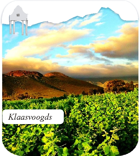 klaasvoogds wineyards